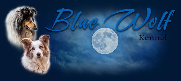 Blue Wolf kennel
